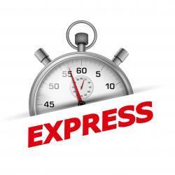 Express Lieferung, kurze Lieferzeit